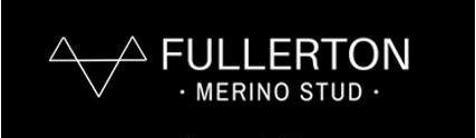 Fullerton Merino Stud