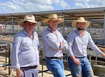AWN beefs up livestock operations, partnering with Parkes business