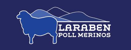 Laraben Poll Merino On Property Sale